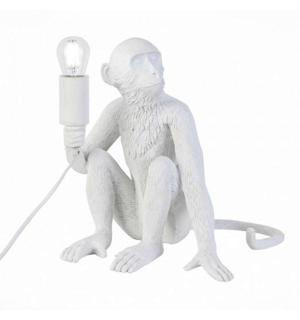Светильник Evoluce TENATO SLE115104-01