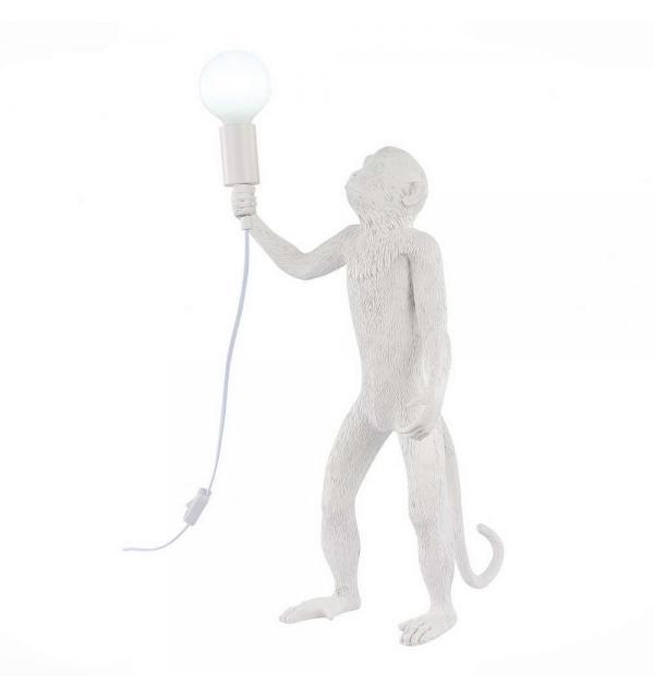Светильник Evoluce TENATO SLE115114-01