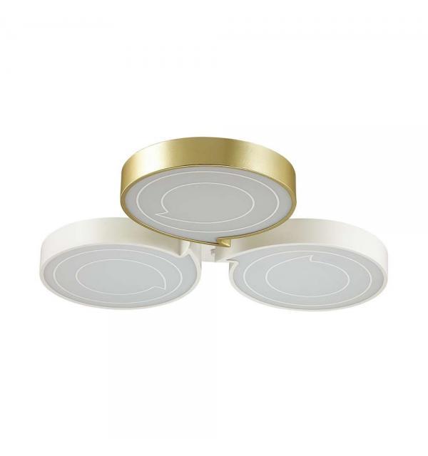 Светильник Lumion DILIP 3646/60CL